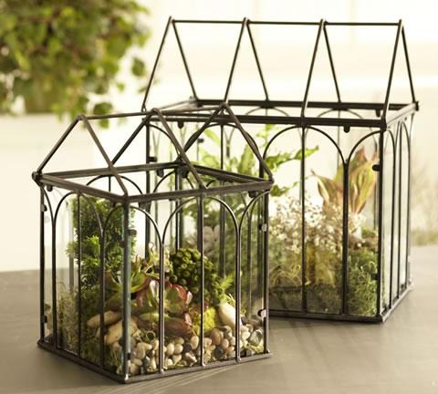 terrarium-home-decor