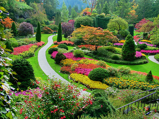 butchart garden2