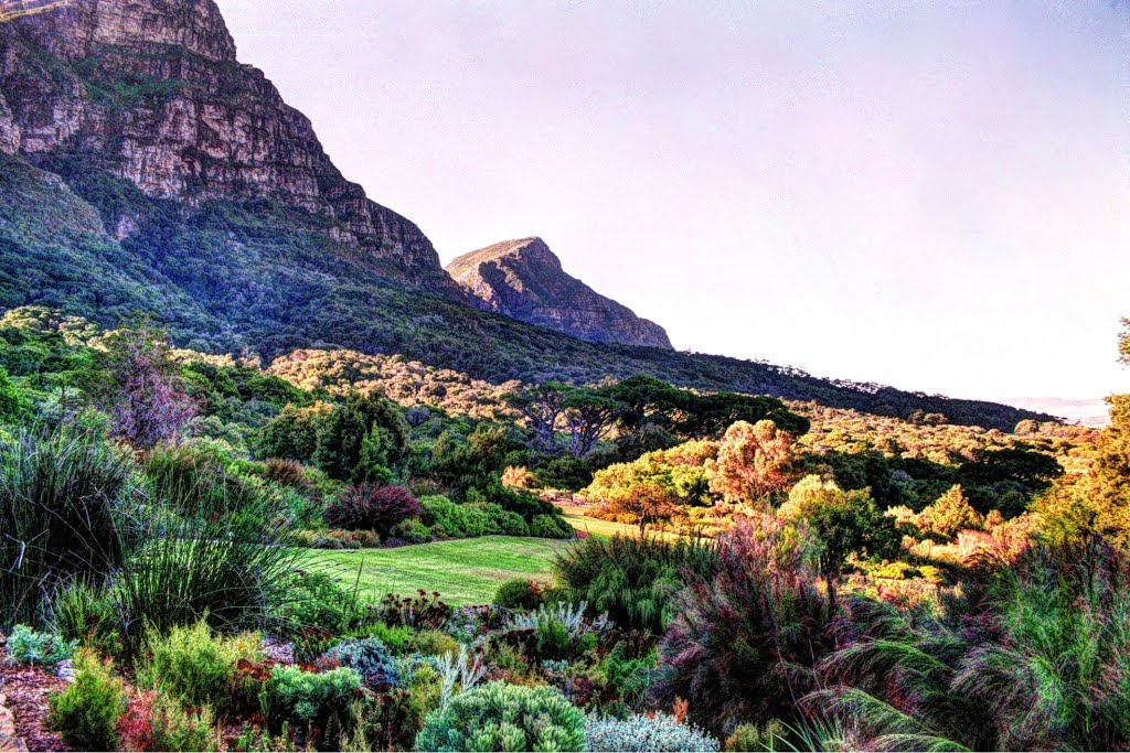 kirstenbosch-national1
